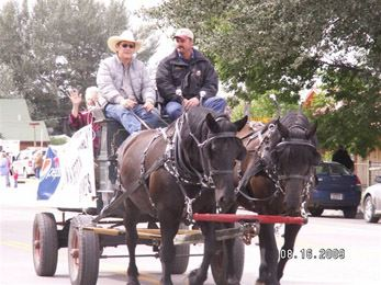 Rodeo Parade Cart